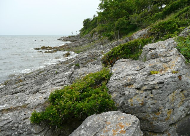 Rocky shore at Jenny Brown�s Point