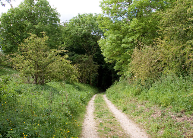 The track down into Great Plantation
