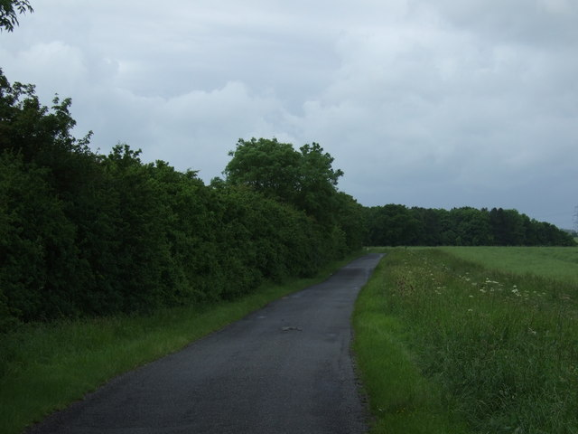 Lane towards Woolley