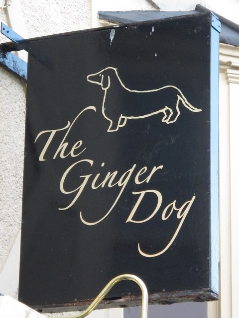 Sign for The Ginger Dog, College Place / Clarendon Place, BN2