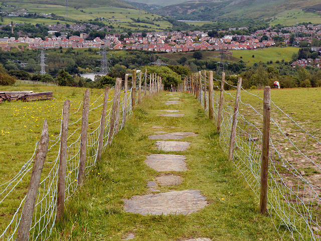 """""""Flaggy Fields"""" - The Path Between Ridge Hill and Heyrod"""