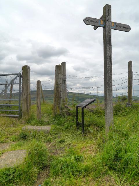 Footpath Signpost, Ridge Hill