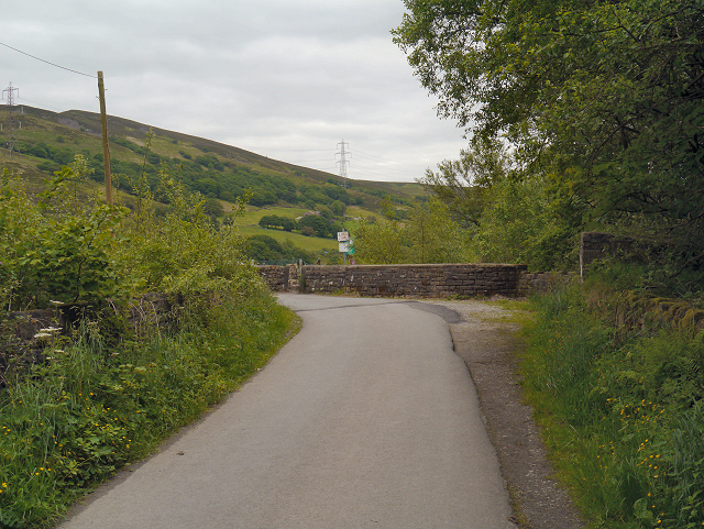 Brushes Road