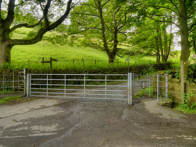 Gate, Brushes Road/Pennine Bridleway
