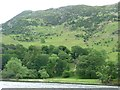 NY3917 : Grassy shore of Blowick Bay, Ullswater by Christine Johnstone