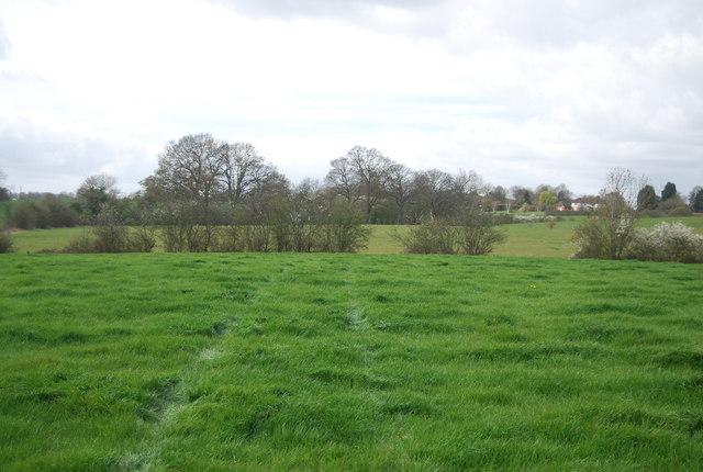 Indistinct High Weald Landscape Trail