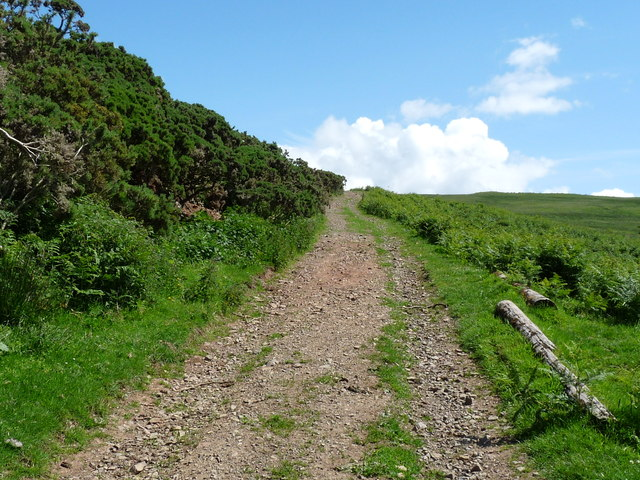 The Laggan Walk