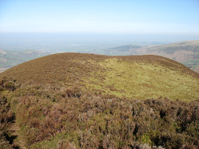 The summit of Dodd (Whiteside)