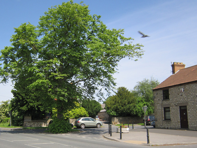 The junction of Main Street and Eastgate, Seamer
