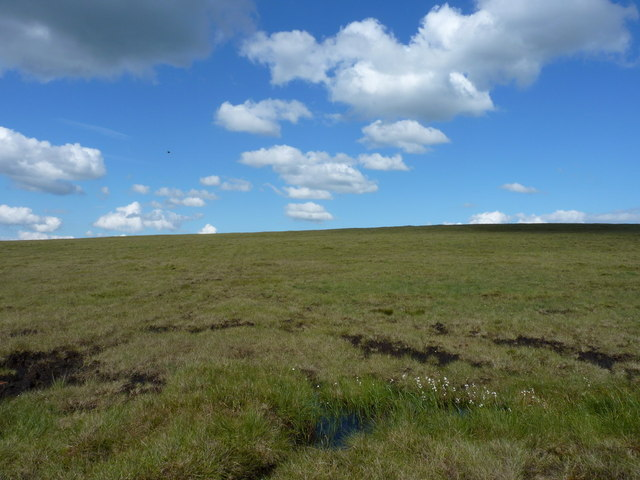 Marshy ground below the Axe Edge trig