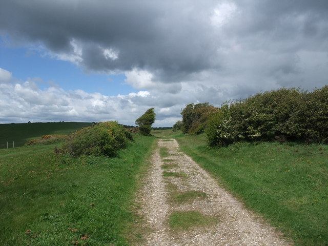The South Downs Way alongside Foxholes