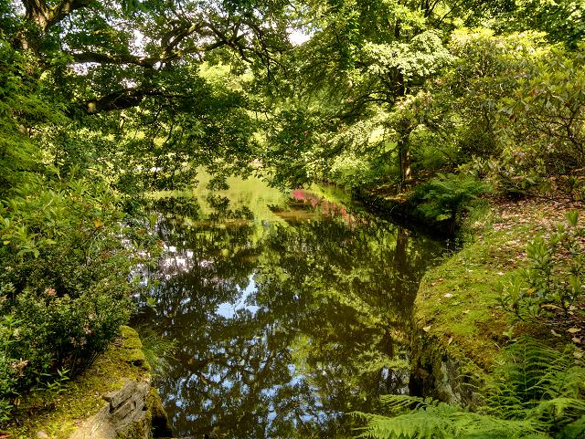 Reflection Lake, Lyme Hall
