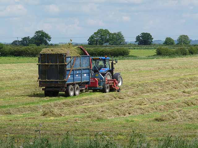 silage making Small scale silage making: page 141 extension materials what should you know about silage making what is silage and why is silage important(5-12) 1 you should know: - the feed value of silage - the importance of storing and feeding silage how can you make a silo(13-56.
