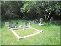 SZ1999 : All Saints, Thorney Hill: churchyard (4) by Basher Eyre