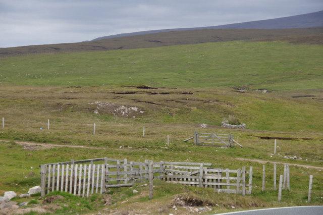 Fields at Braewick