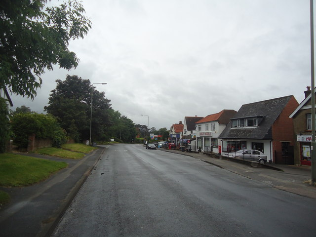 Leatherhead Road, Bookham