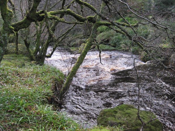 Blakehope Burn above a Waterfall