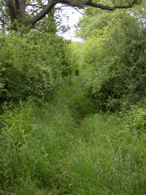 Bridleway in Glaisdale