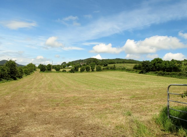 Harvested hay field on the north side of the New Road