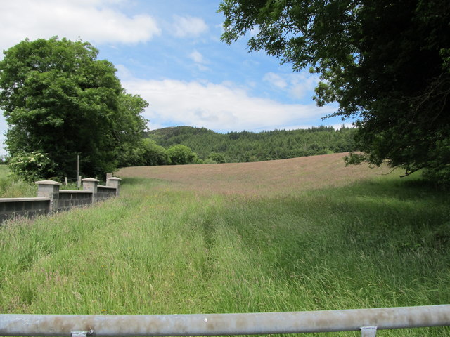 View across farm land towards the forested Tievecrom Mountain