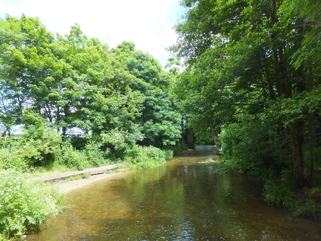 River Darent from Frank's Lane
