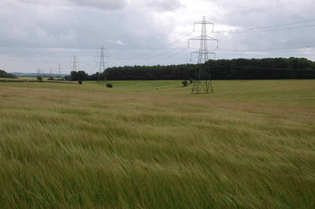 Pylons in a field of barley