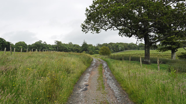 Unmade road and bridleway