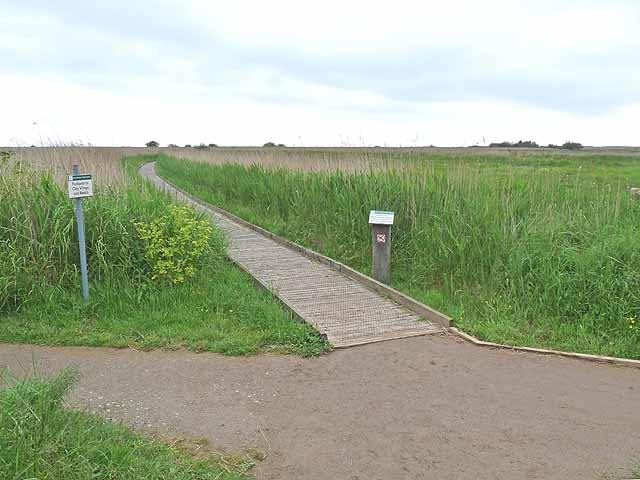 Path to the hides, Cley Marshes Nature Reserve