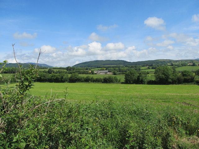 Farmland on the north-eastern side of Carrickasticken Road