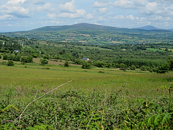 Kilkenny Landscape