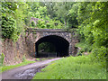NZ2253 : Eastern portal of old railway tunnel at Beamish by Trevor Littlewood