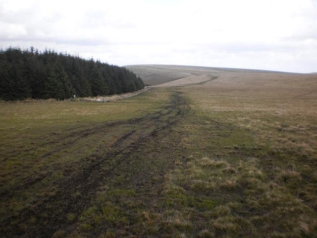 St Illtyd's Walk used by quads