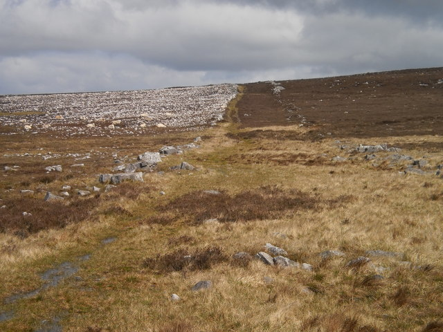 The old road: sheep and stones