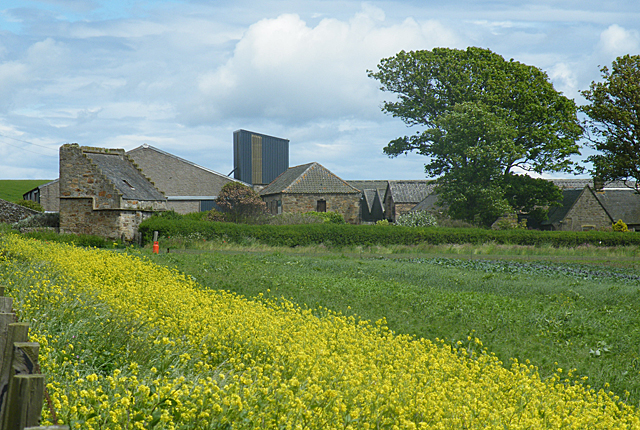 Ardross Farm
