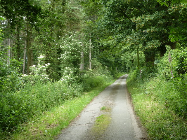South Hill Lane