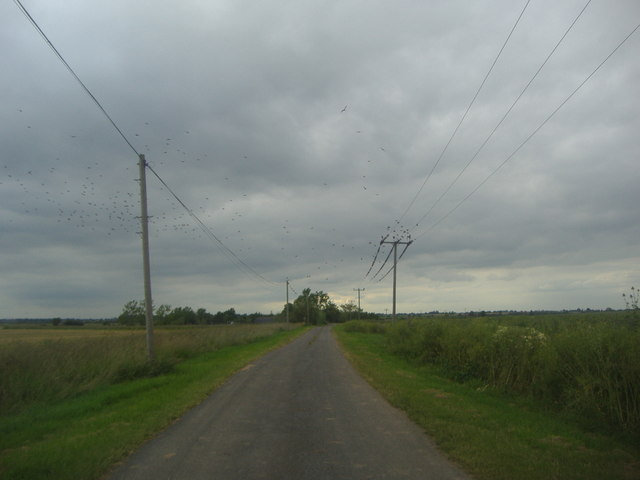 Bridgewick Road before Brook farm