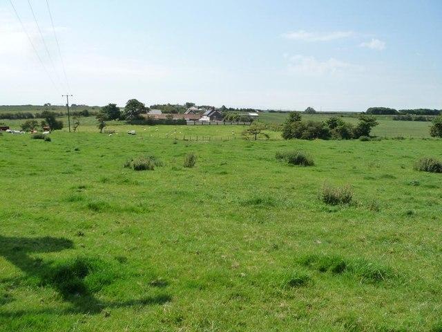 Grange Farm, Buckton