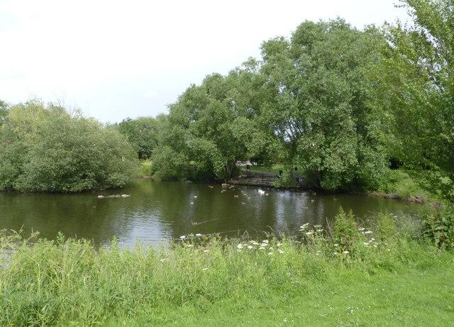 Compton Acres pond