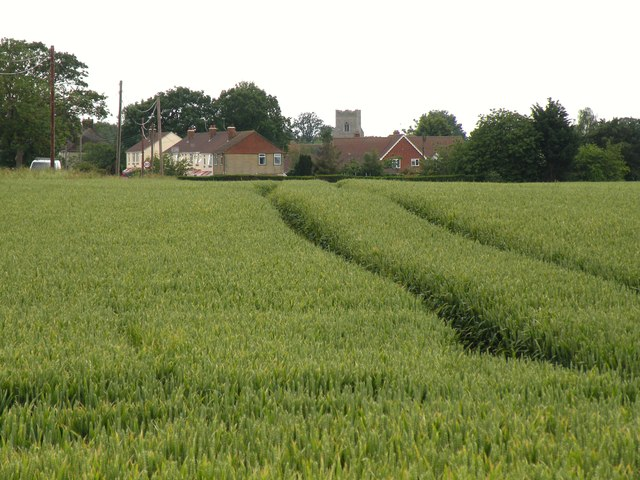 Looking across a field to Barningham