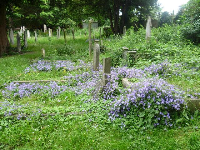 St Nicholas Churchyard, Sutton