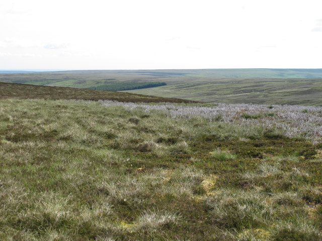 Panorama from Stang End (2: NE - Risegreen Moss)
