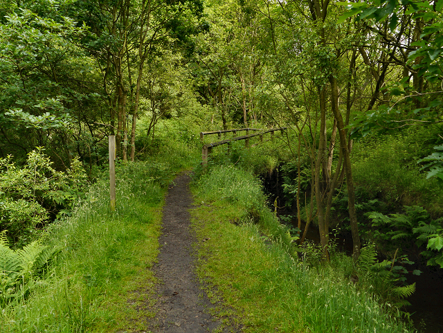 Castle Clough
