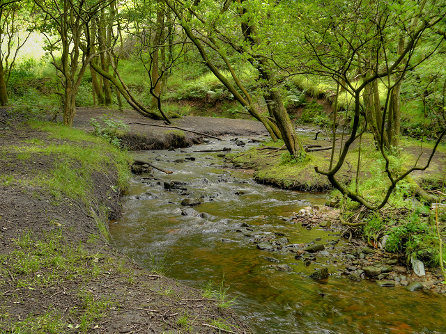 Castle Clough, Staly Brook