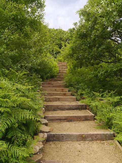 Steps, Cowbury Dale
