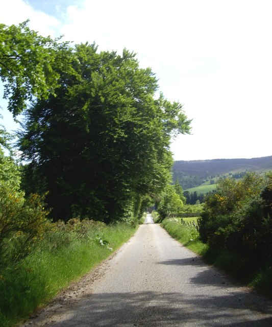 Run down past Loanhead to Mains of Corse