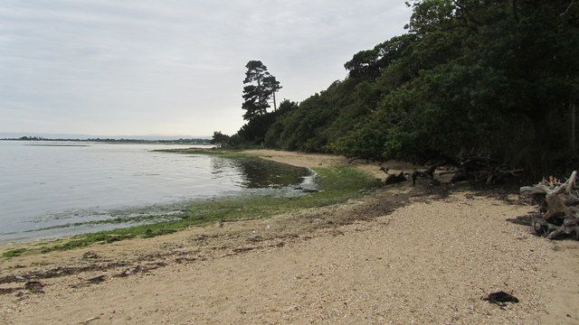 View across towards Brickyard Creek from Beach below Inchmery House