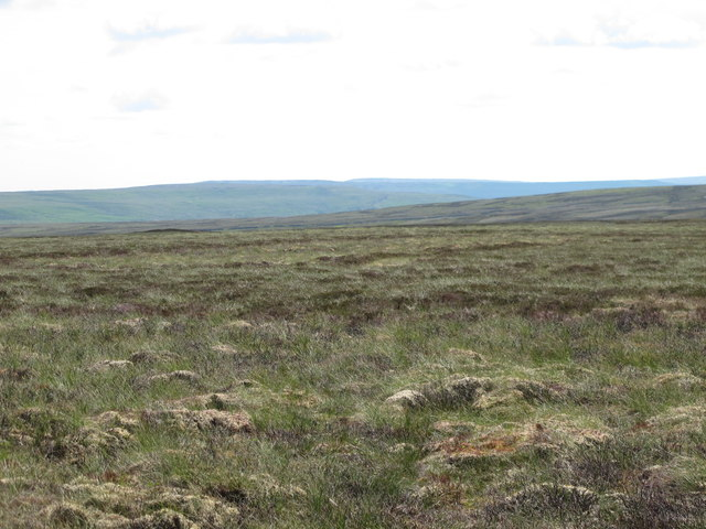 Stangend Rigg and Westend Moor