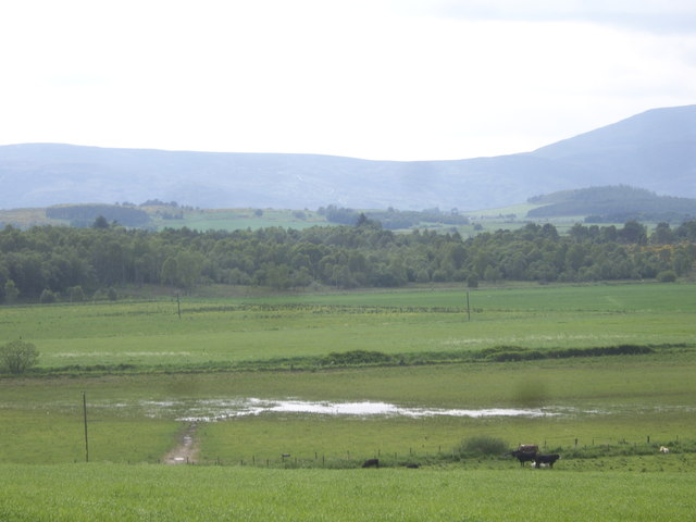 Flooded field, Howe of Cromar
