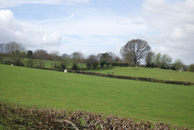 Farmland, Isle of Oxney
