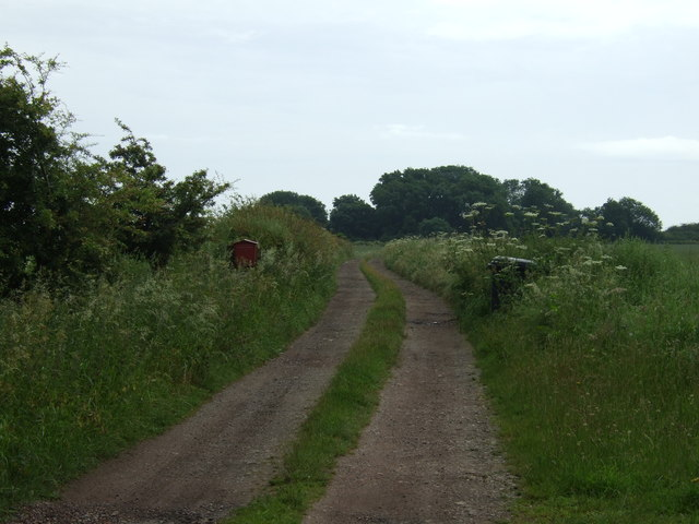 Track towards Tipping's Lodge